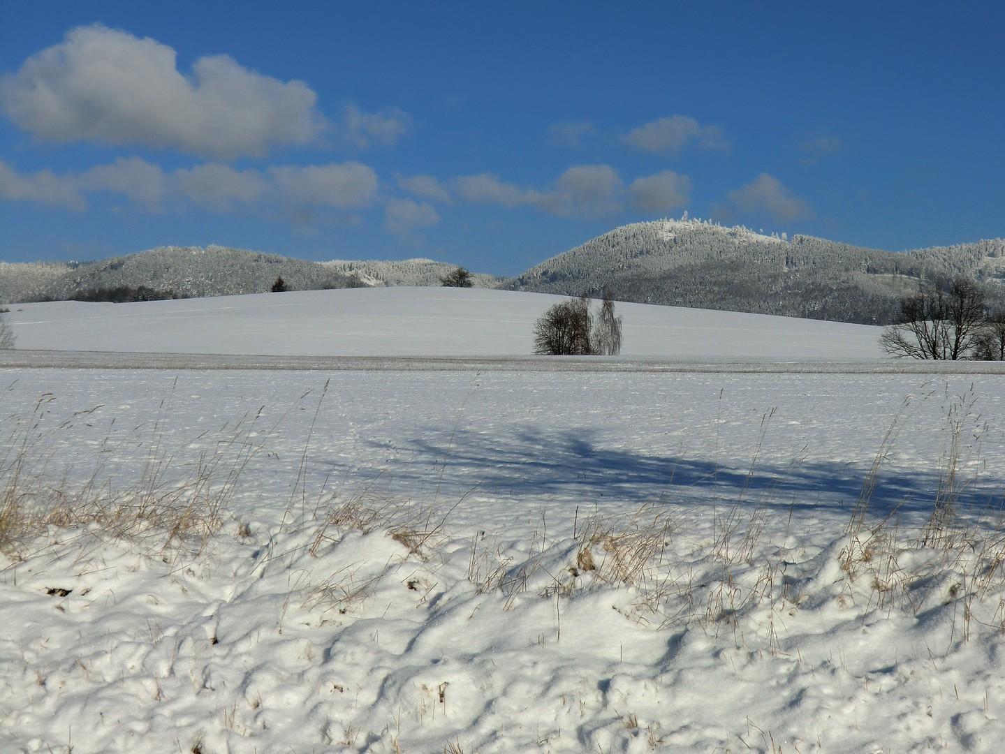 Javoří hory zima 2
