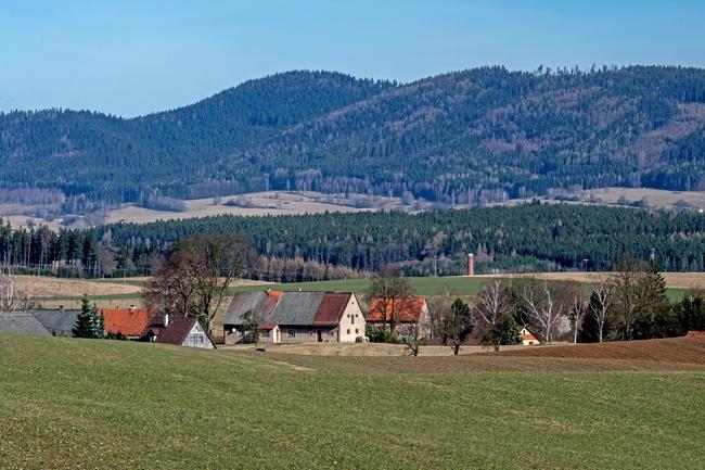 Jetřichov
