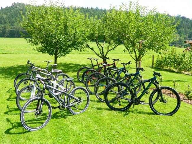Půjčovna sportovního vybavení - Penzion pod Křížovým vrchem